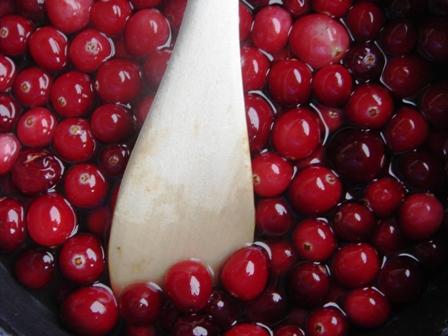 cranberry-sorbet-2