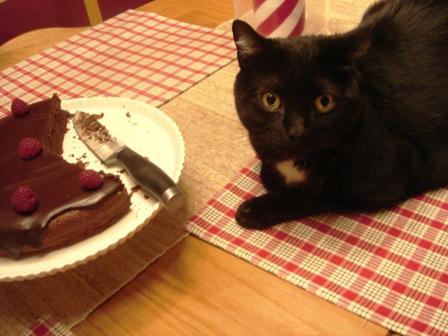 zoe-cake